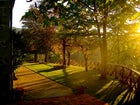 The garden that surrounds the farmhouse